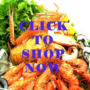 Shop Fresh Today